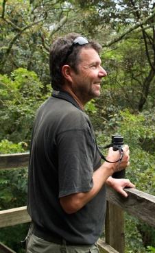 Tourist on a canopy platform, Kakamega Forest National Reserve, Kenya